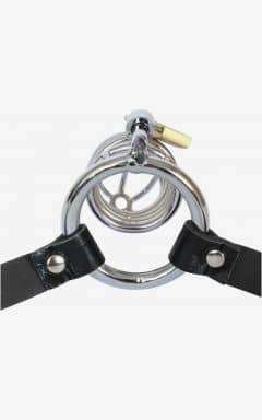 Kyskhedsbælter Chastity belt